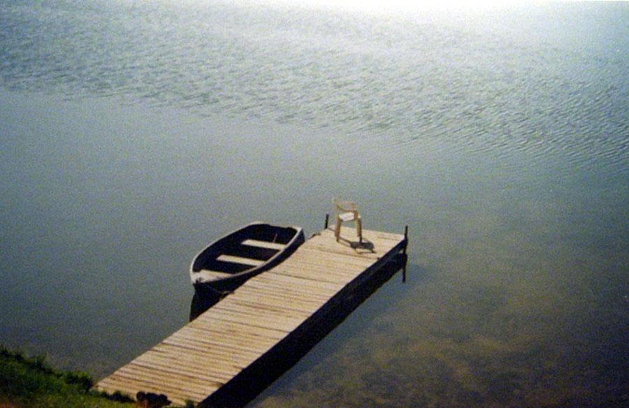 buggysboat.jpg